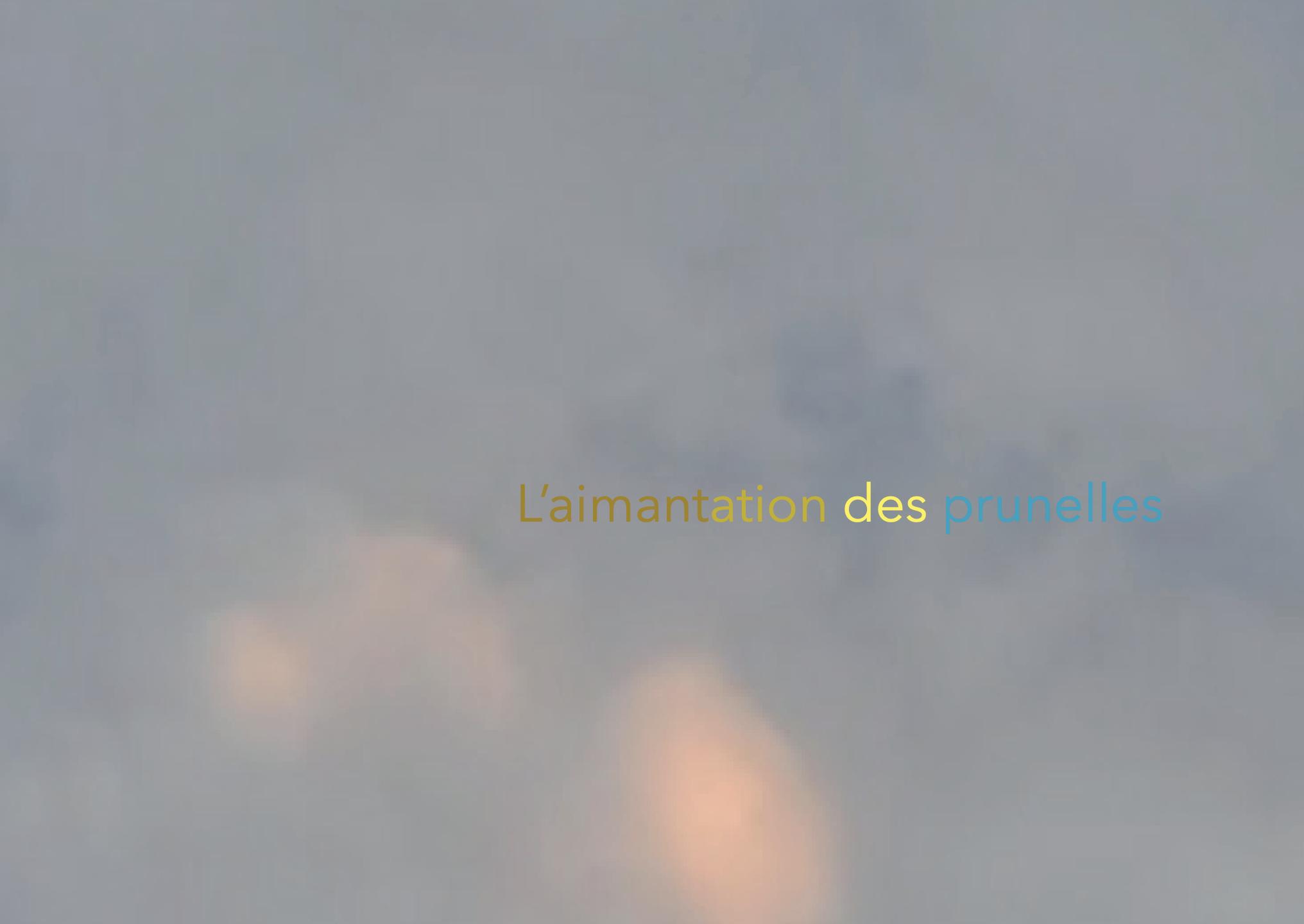 """Affiche pour l'exposition collective """"L'aimantation des prunelles"""", CREATIVE SUMMER # 1, commissariat êtrecontemporain?, La Folie numérique, Paris la Villette, 2019"""